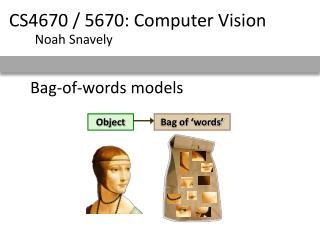 Bag-of-words models