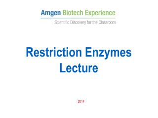 Restriction Enzymes Lecture