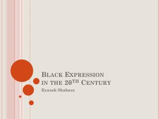 Black Expression  in the 20 th  Century