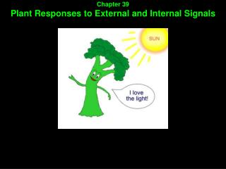 Chapter 39 Plant Responses to External and Internal Signals