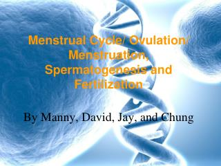 Menstrual Cycle/ Ovulation/ Menstruation, Spermatogenesis and Fertilization