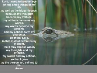 Lord, I need to keep an eye on the small things in my life as well as the bigger issues,