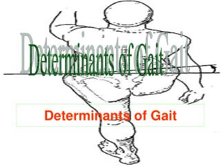 Determinants of Gait
