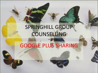SPRINGHILL GROUP COUNSELLING - Google Plus