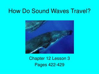 How Do Sound Waves Travel?