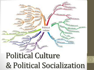 Political Culture & Political Socialization