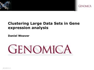 Clustering Large Data Sets in Gene expression analysis Daniel Weaver