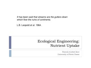 Ecological Engineering:  Nutrient Uptake