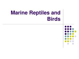 Marine Reptiles and Birds