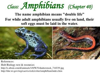 "Class:   Amphibians   (Chapter 40) The name amphibian means ""double life"""