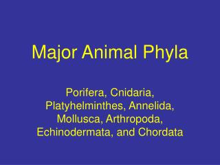 Major Animal Phyla