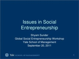 Issues in Social Entrepreneurship
