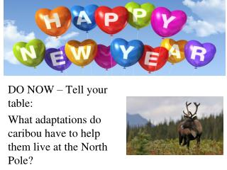 DO NOW – Tell your table: What adaptations do caribou have to help them live at the North Pole?