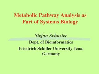 Metabolic Pathway Analysis as Part of Systems Biology