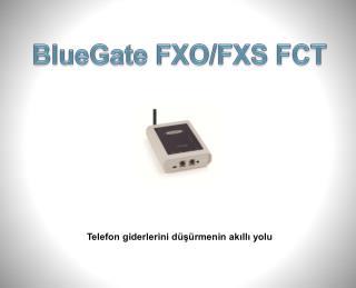 BlueGate FXO/FXS FCT