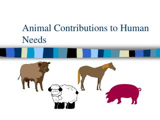 Animal Contributions to Human Needs