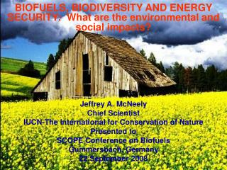 BIOFUELS, BIODIVERSITY AND ENERGY SECURITY:  What are the environmental and social impacts?
