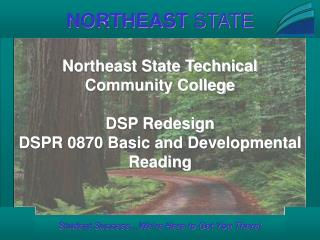 Northeast State Technical Community College DSP Redesign DSPR 0870 Basic and Developmental Reading