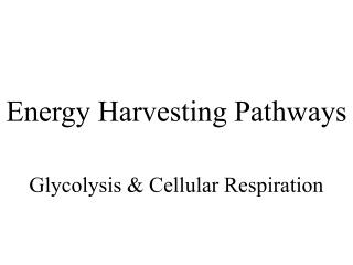 Energy Harvesting Pathways