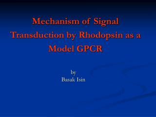 Mechanism of Signal Transduction by Rhodopsin as a Model GPCR