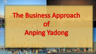 The Business Approach of Anping Yadong