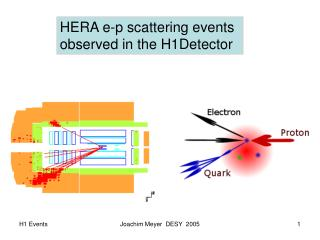 HERA e-p scattering events  observed in the H1Detector