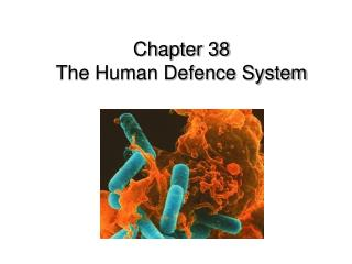 Chapter 38  The Human Defence System