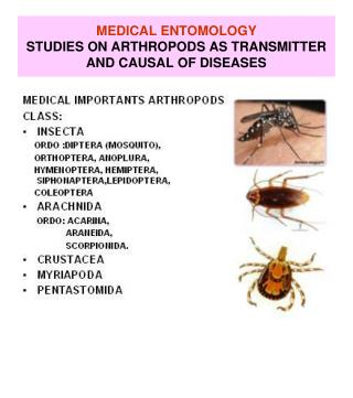MEDICAL ENTOMOLOGY STUDIES ON ARTHROPODS AS TRANSMITTER AND CAUSAL OF DISEASES