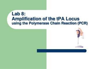 Lab 8: Amplification of the  tPA  Locus  using the Polymerase Chain Reaction (PCR)
