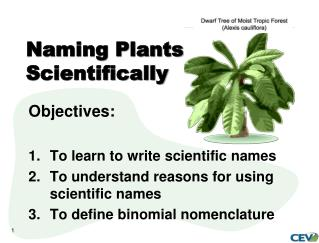 Naming Plants Scientifically