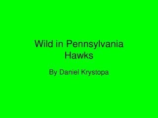 Wild in Pennsylvania Hawks