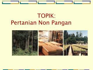 TOPIK: