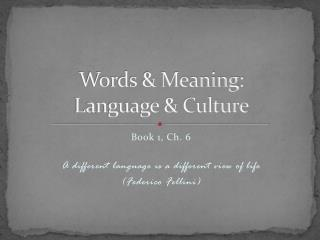 Words & Meaning: Language & Culture