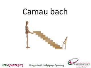 Camau bach