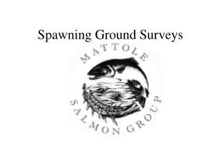 Spawning Ground Surveys