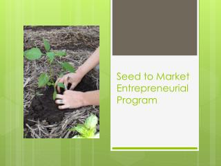 Seed to Market Entrepreneurial Program