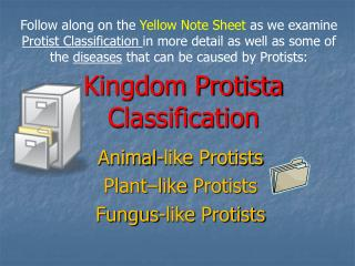 Kingdom Protista Classification