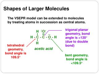 The VSEPR model can be extended to molecules by treating atoms in succession as central atoms.