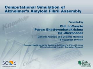 Computational Simulation of Alzheimer's Amyloid Fibril Assembly