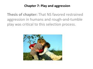 Chapter 7: Play and aggression