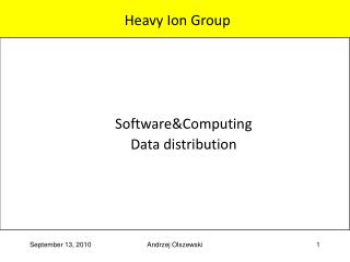 Heavy Ion Group