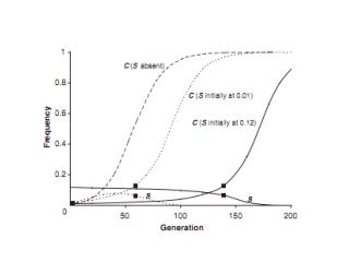 Why does C increase so slowly even when A is the only other allele?