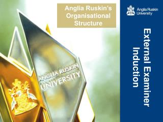 Anglia Ruskin's Organisational Structure