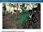 Chapter 8 Opener  Dr. Wangari Maathai s Green Belt Movement encourages the women of Kenya in reforestation efforts