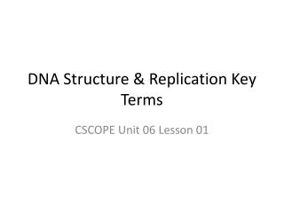 DNA Structure & Replication Key Terms