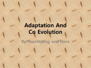 Adaptation And  Co Evolution