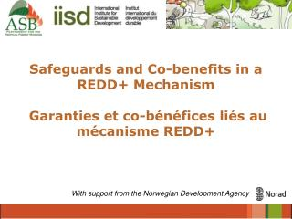 Safeguards and Co-benefits in a REDD+ Mechanism  Garanties et co-bénéfices liés au mécanisme REDD+