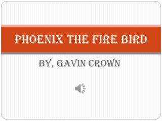 Phoenix the fire bird