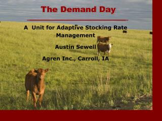 The Demand Day