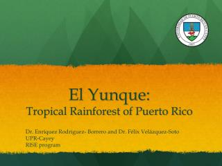 El  Yunque : Tropical Rainforest of Puerto Rico